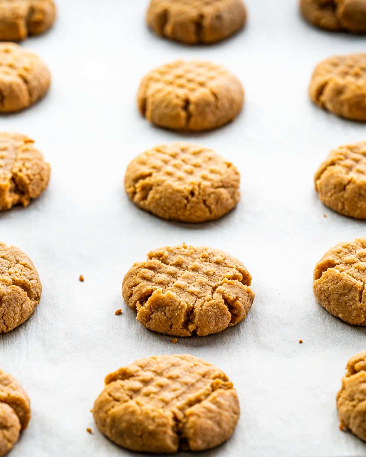 peanut butter cookies fresh out of the oven on a baking sheet.