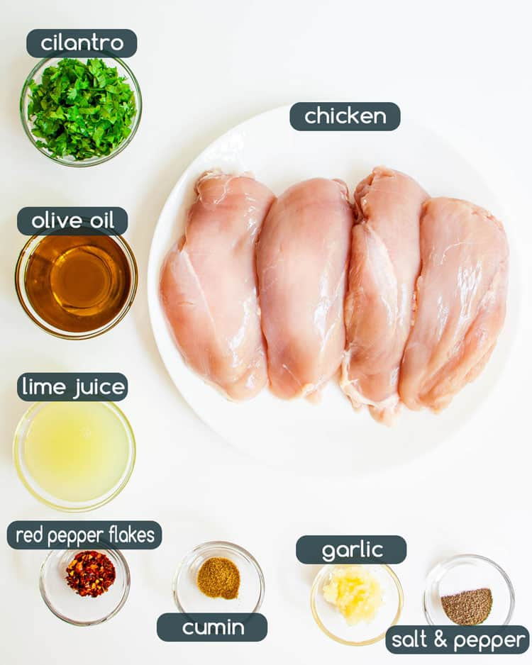 overhead shot of ingredients needed to make cilantro lime chicken