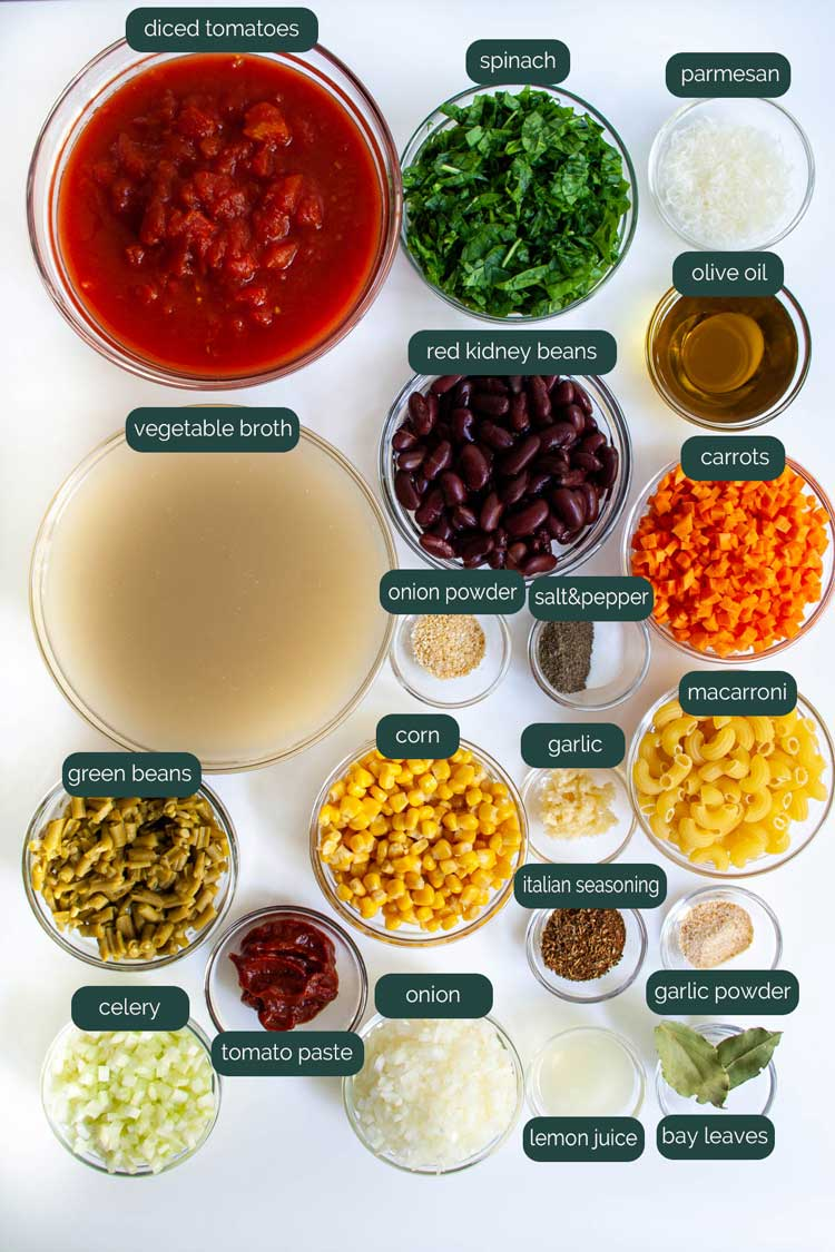 overhead shot of all ingredients needed to make minestrone soup