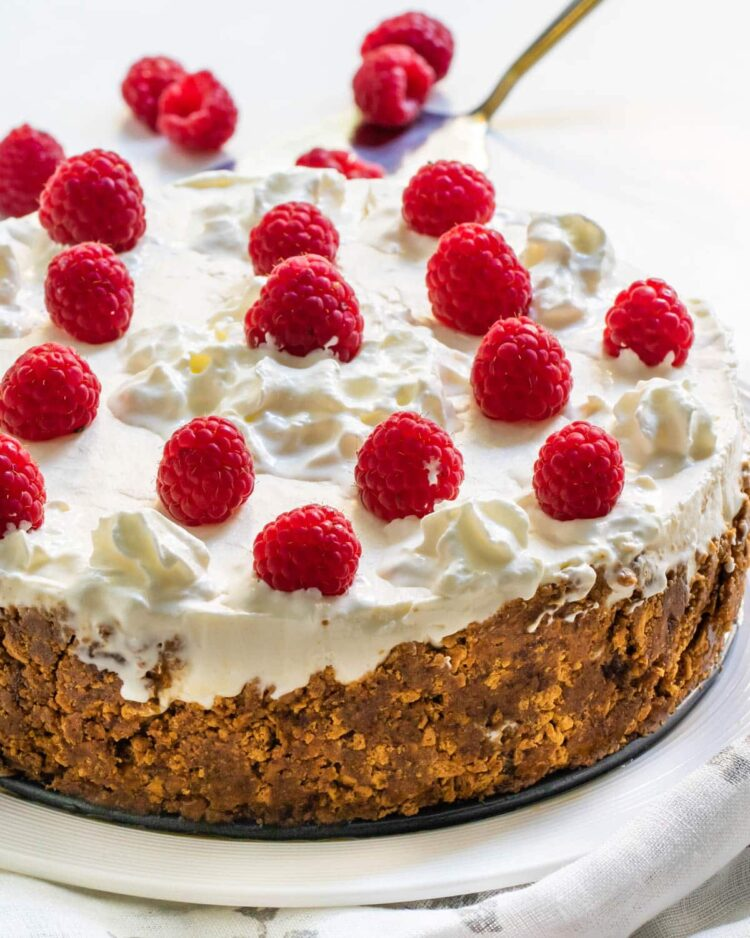 cheesecake on a white plate topped with whipped cream and raspberries