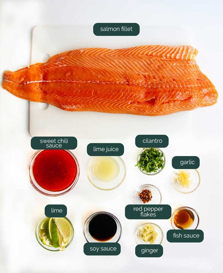 overhead shot of ingredients needed to make thai salmon