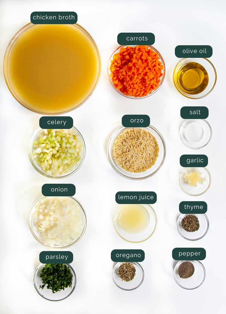 overhead shot of ingredients needed to make chicken noodle soup