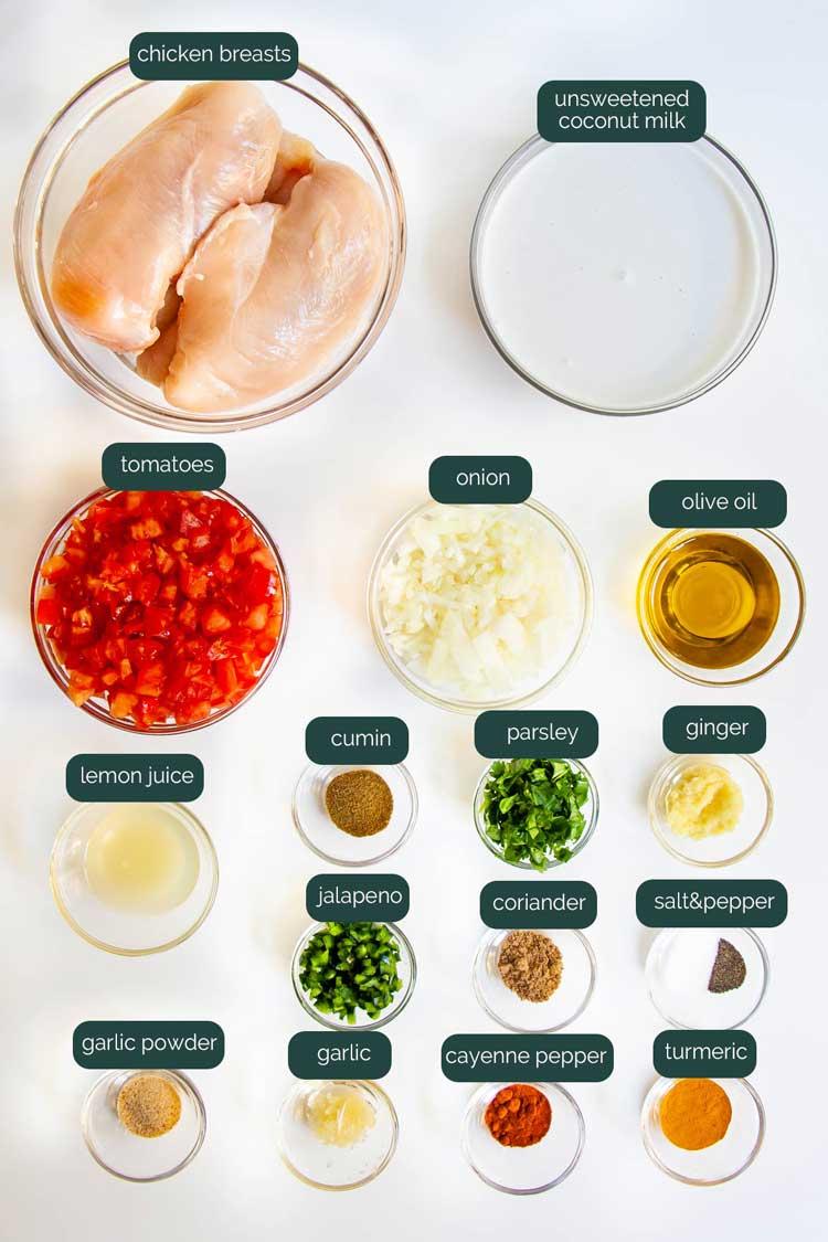 overhead shot of ingredients needed to make spicy brazilian coconut chicken