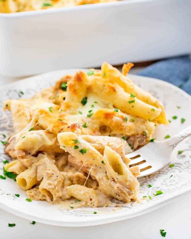chicken alfredo pasta in a white plate