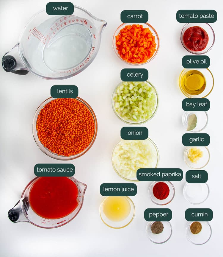 overhead shot of all the ingredients needed to make lentil soup