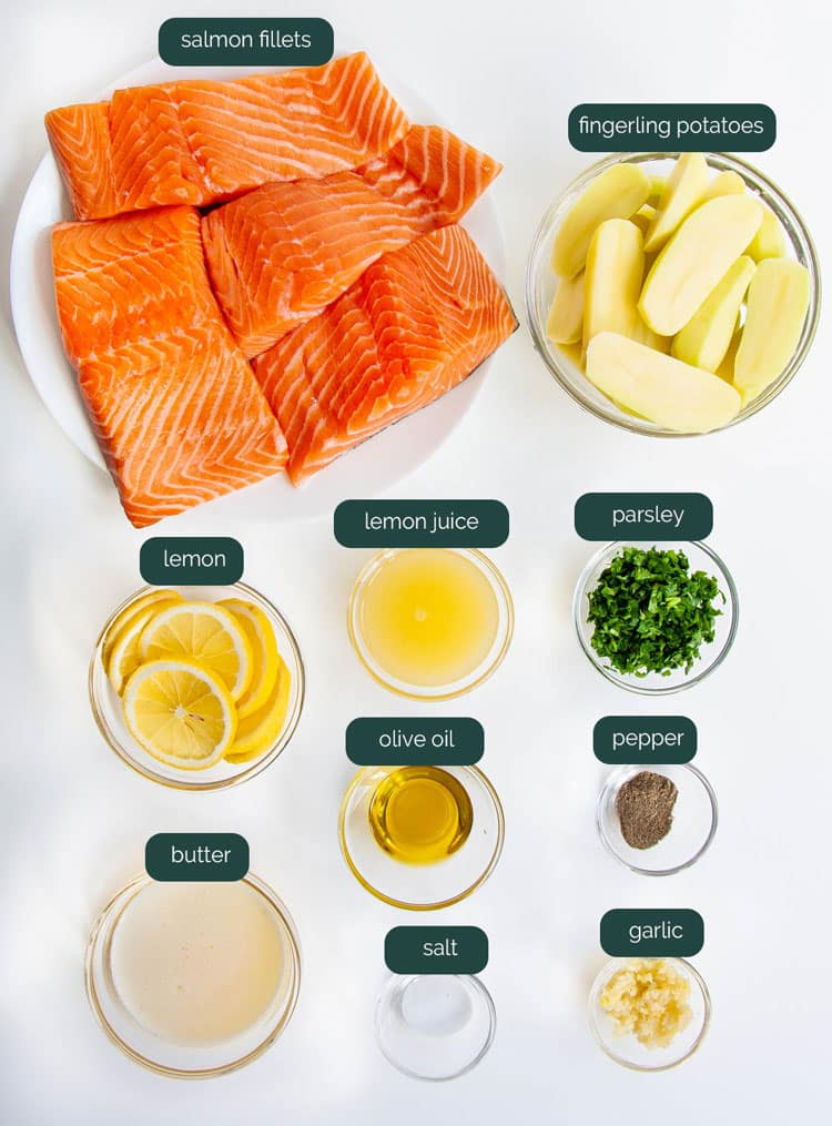 overhead shot of ingredients for garlic butter baked salmon