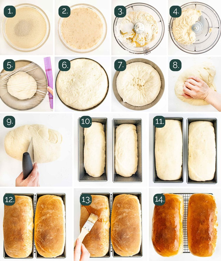 process shots showing how to make amish white bread from start to finish