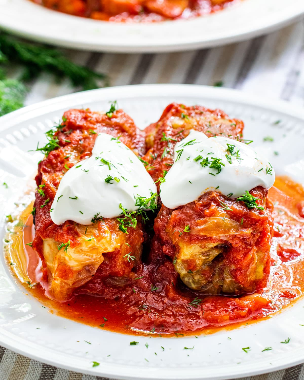 two cabbage rolls on a white plate topped with a dollop of sour cream and fresh dill