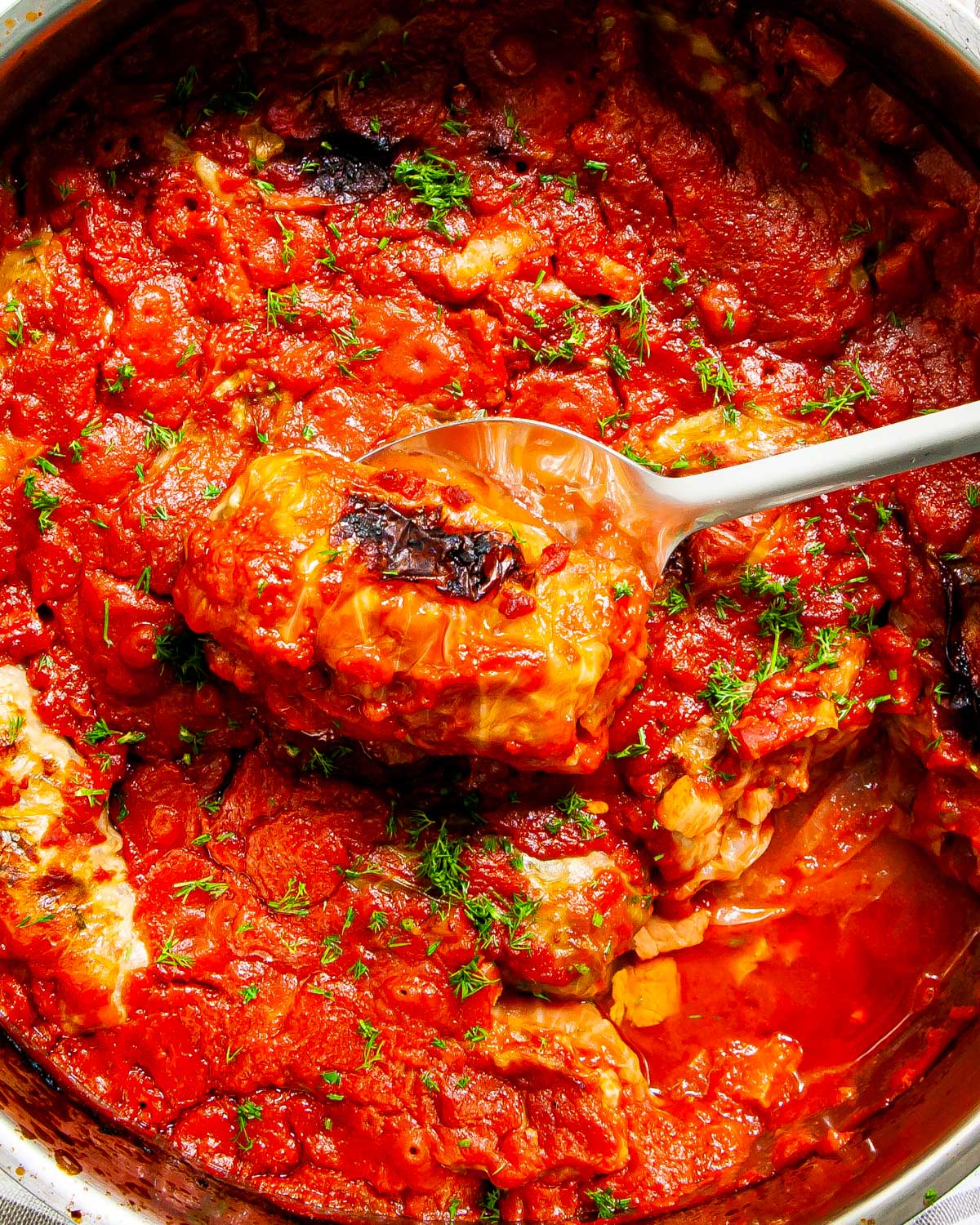 overhead shot of a pot full of stuffed cabbage rolls with a serving spoon holding one roll