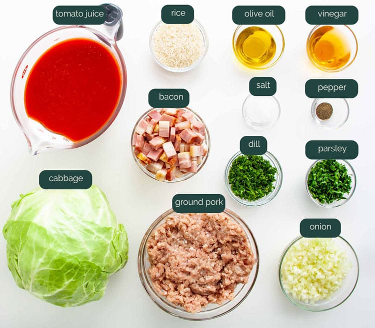overhead shot of all the ingredients needed to make stuffed cabbage rolls