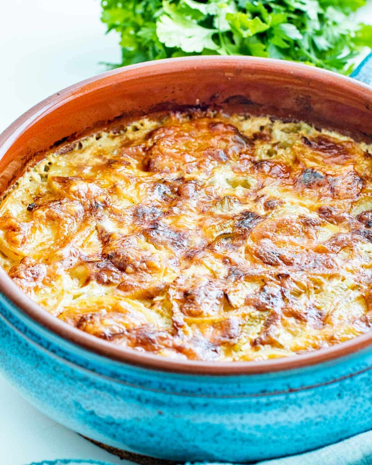sideview shot of fennel potato gratin in a  blue baking dish