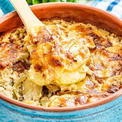 Fennel Potato Gratin