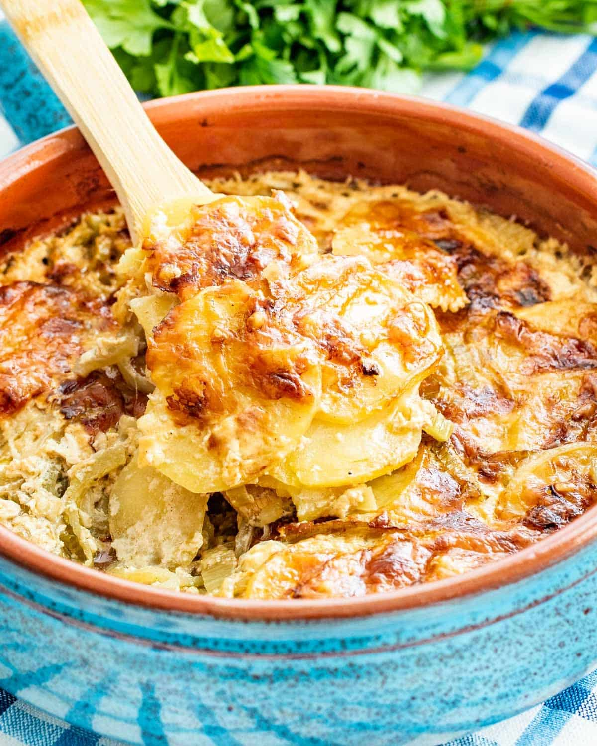 side view shot of fennel potato gratin in a baking dish with a serving spoon picking some out