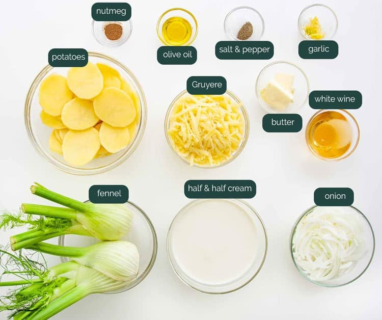 overhead shot of all the ingredients needed to make fennel potato gratin