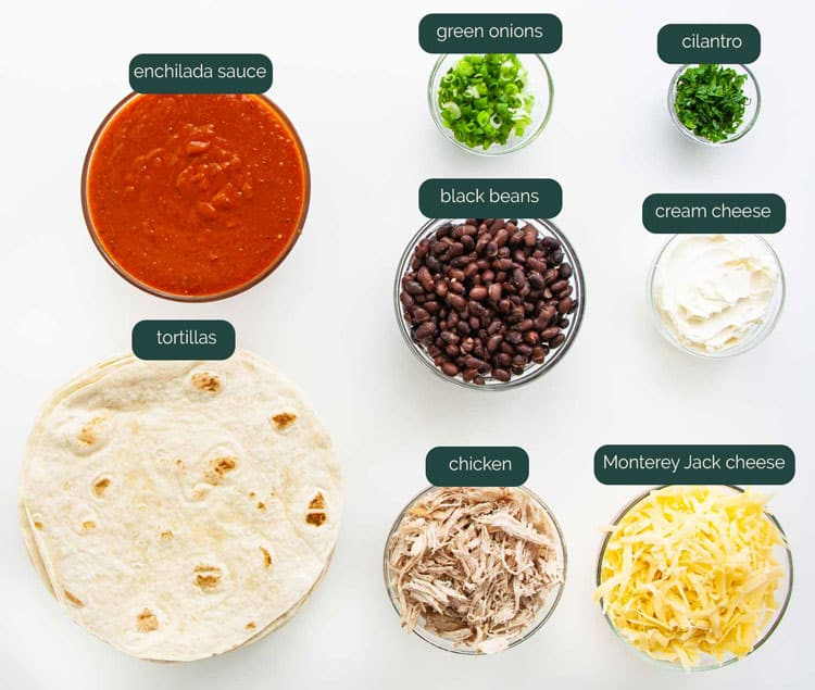 overhead shot of all the ingredients needed to make chicken enchiladas