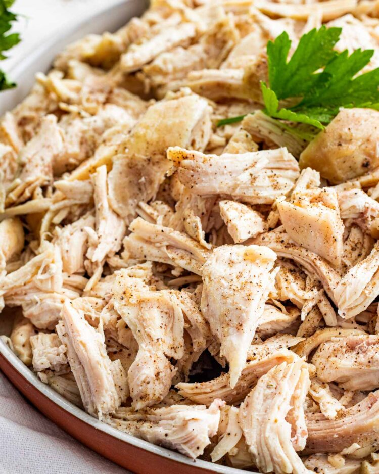 closeup of shredded chicken on a plate