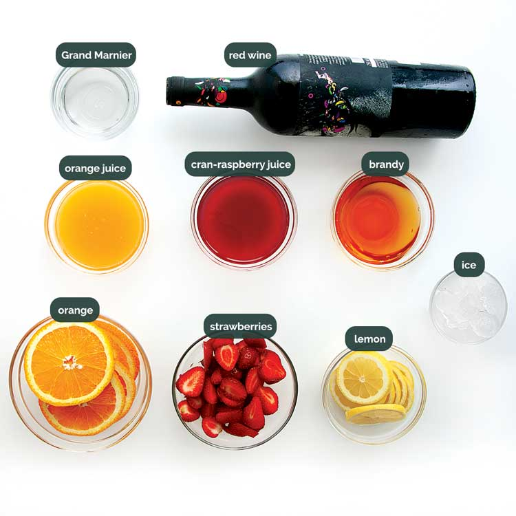 overhead shot of all ingredients needed to make red sangria