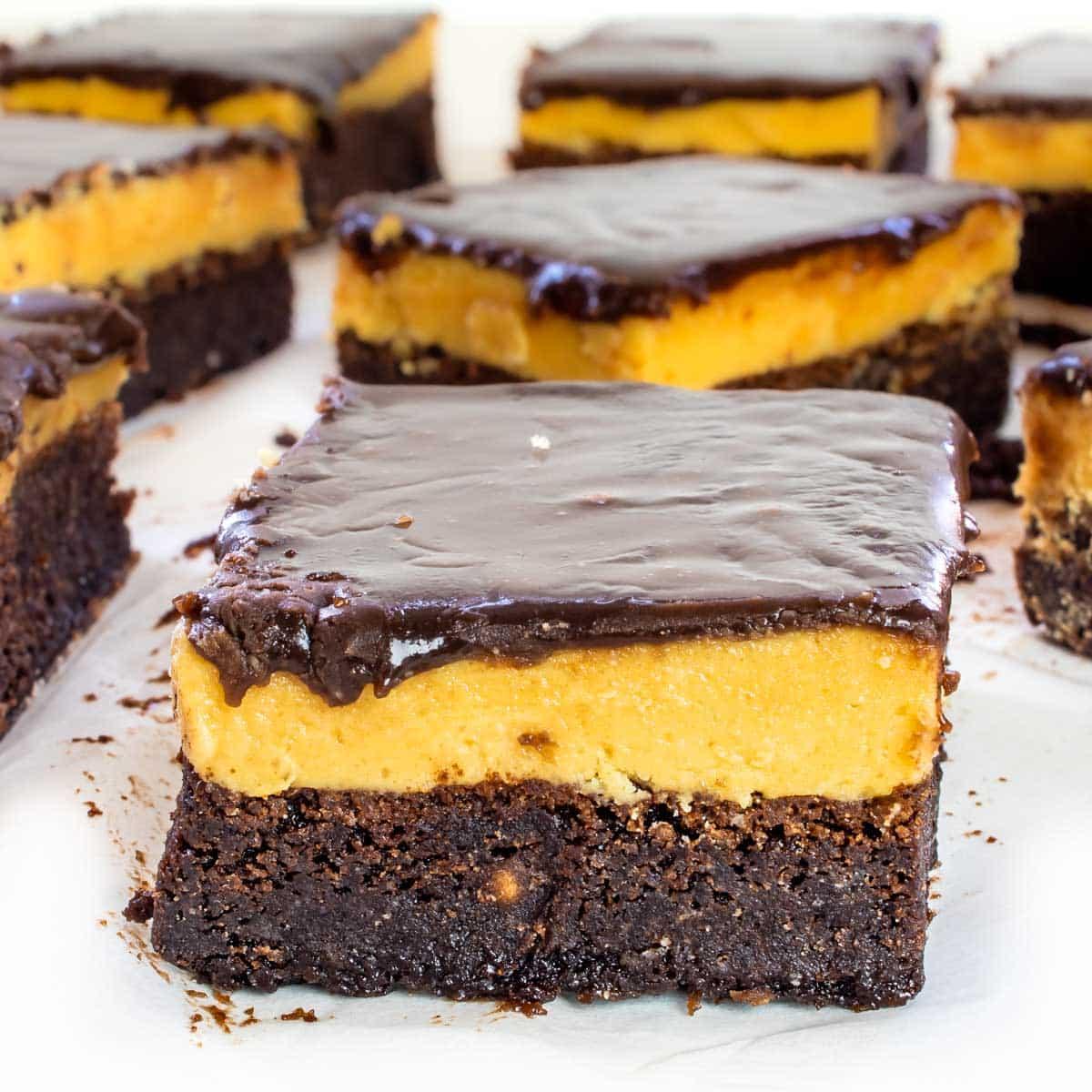 closeup of a peanut butter brownie square.